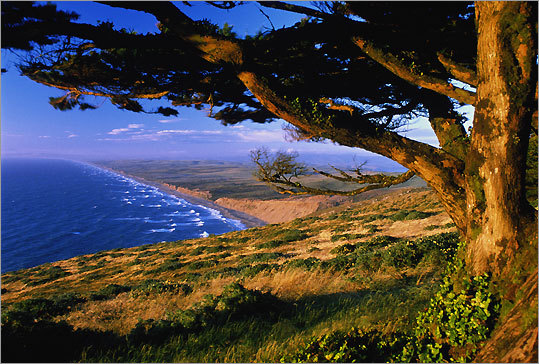 Marin County San Fransisco