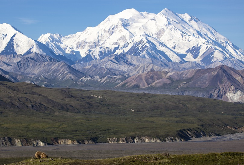 denali_national_park